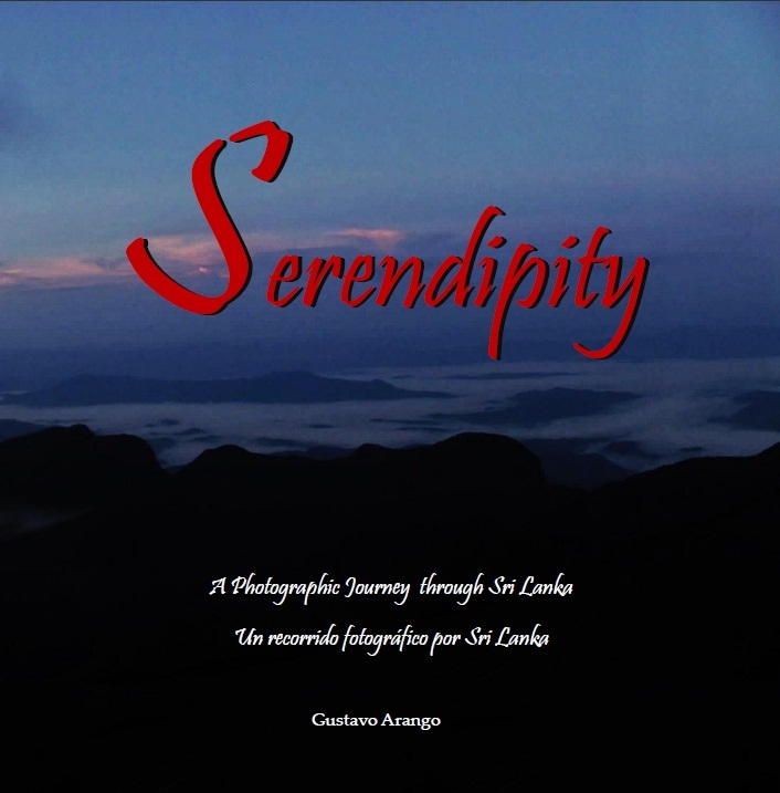 coverserendipity