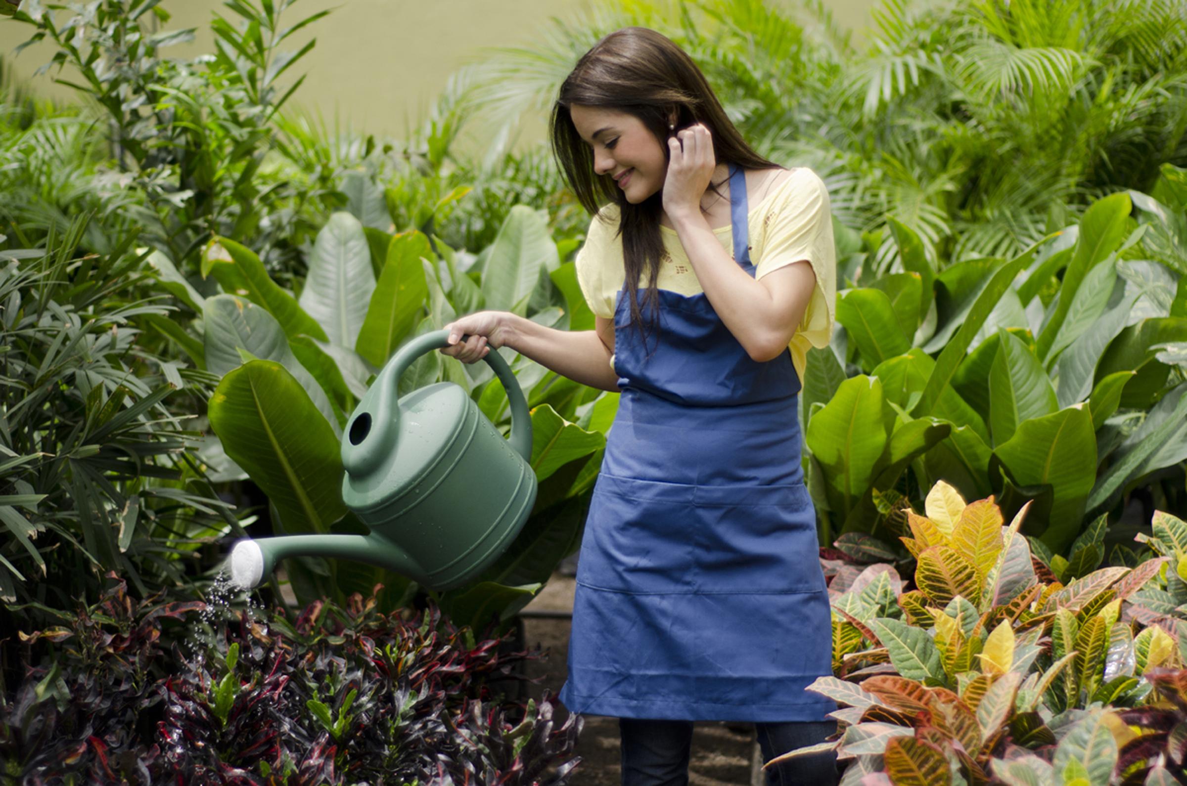 Plásticos reciclados en el jardín. Todo en función de 'lo verde'