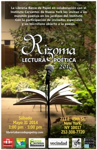 Rizoma-2014-Instituto-Cervantes-021