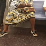 Facetas multicolores de viajar en tren en NY